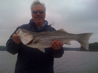 Maine Saltwater Charters