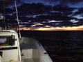 Early albie run - get fishing before sunrise