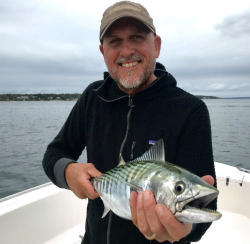Cape Cod Albie Fishing Bonito