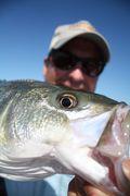 Fishing 20090009